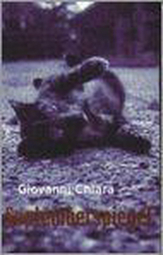 Septemberspiegel - Giovanni Chiara pdf epub