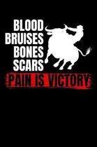 Blood Bruises Bones Scars Pain Is Victory