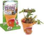 My Fairy Garden Flowerpot - Bloempot en elfenhuisje voor kinderen