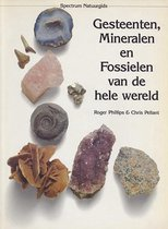 Gesteenten mineralen en fossielen