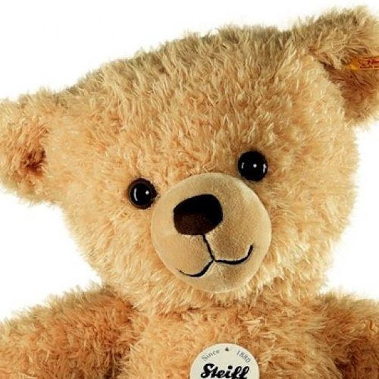 Thumbnail van een extra afbeelding van het spel Steiff 013584 TEDDYBEER KIM - 65 cm
