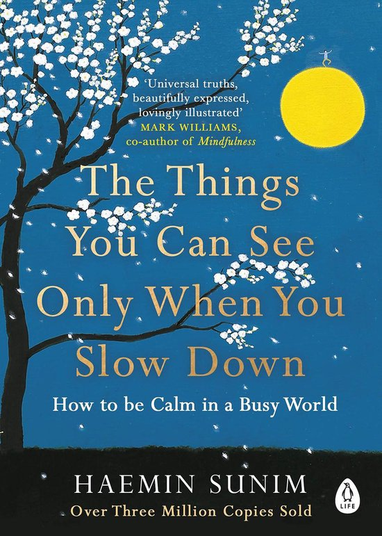 Boek cover The Things You Can See Only When You Slow Down van Haemin Sunim (Paperback)