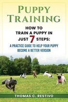 Puppy training: How to train a puppy in just 7 steps