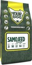 Volwassen 3 kg Yourdog samojeed hondenvoer