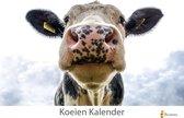 Cadeautip! |Koeien - koe verjaardagskalender 35x24 cm | Wandkalender