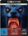 An American Werewolf in London (Ultra HD Blu-ray & Blu-ray)