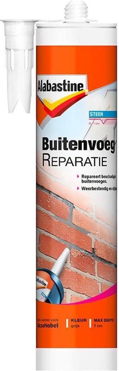 Alabastine Buitenvoegreparatie - 310ML - 5095991