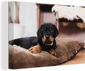 Rottweiler pup ligt op een zacht kussen Canvas 120x80 cm - Foto print op Canvas schilderij (Wanddecoratie woonkamer / slaapkamer) / Huisdieren Canvas Schilderijen