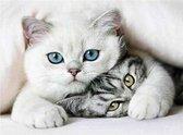 Eagle® Diamond Painting Volwassenen - Diamond Painting Kinderen - Kittens - 40x30cm