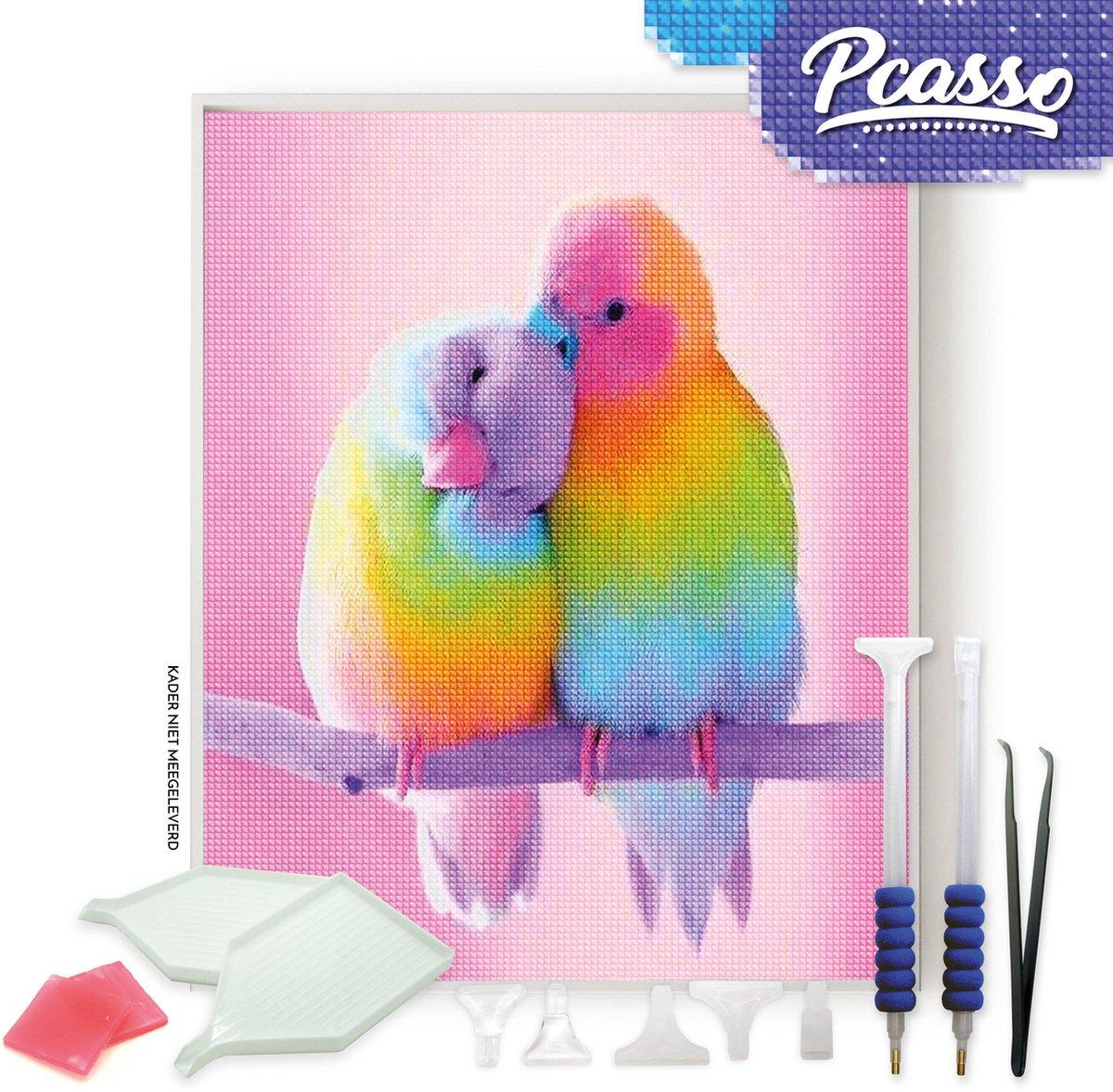 Pcasso ® Vogels Op Tak - Diamond Painting - Incl. Veel Diamond Painting Accessoires - Diamond Painting Kinderen - Diamond Painting Dieren - Diamond painting volwassenen - 30x40 CM
