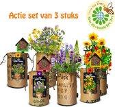 3 Stuks complete Kweekset Wildbloemen met gratis Bijenhotel