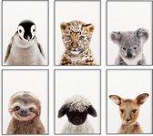 Dieren posters – Babykamer/kinderkamer posters – Baby dieren wanddecoratie  - 6 stuks 20x30 cm – Kinder posters – Muurdecoratie – Dieren decoratie