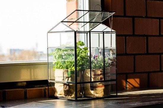 Greenhouse Kweekkasje