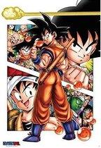 Dragon Ball Z Poster Son Goku story