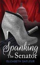 Spanking The Senator