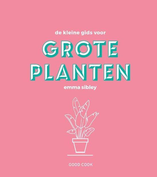 De kleine gids voor grote planten