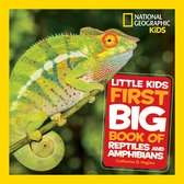 Little Kids First Big Book of Reptiles and Amphibians (Little Kids First Big Books)