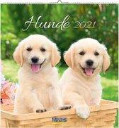 Honden / Hunde Briefkaart Kalender 2021 (formaat 16x17)