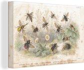 Een illustratie van een groep bijen canvas 60x40 cm - Foto print op Canvas schilderij (Wanddecoratie woonkamer / slaapkamer) / Wilde dieren Canvas Schilderijen