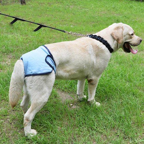 Luier voor hond voor incontinentie en loopsheid - Teef - maat M - blauw