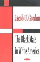 Black Male in White America