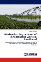 Biochemical Degradation of Lignocellulosic Waste in Bioethanol