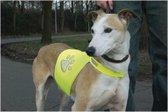 Beeztees Safety Gear Veiligheidsvest - Hond - Geel - S