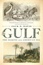 Boek cover The Gulf: The Making of An American Sea van Jack E. Davis