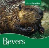 Dierenfamilies - Bevers