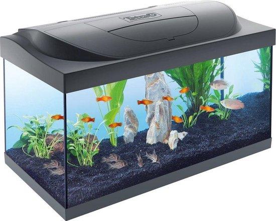 Starter Line aquarium zwart led 54 Liter met filter en verwarming