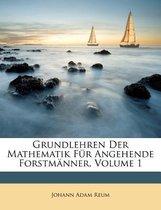 Grundlehren Der Mathematik Fur Angehende Forstm Nner, Volume 1