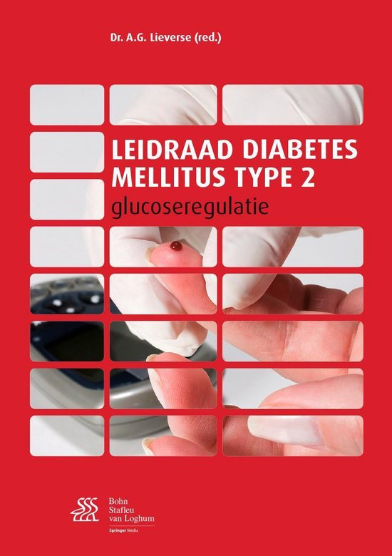 Leidraad diabetes mellitus type 2 - none |
