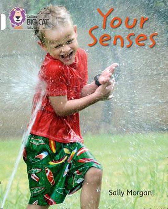 Your Senses
