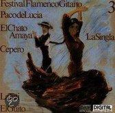Festival Flamenco 3