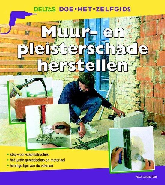 Cover van het boek 'Muur- en pleisterschade herstellen'