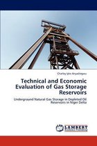 Technical and Economic Evaluation of Gas Storage Reservoirs