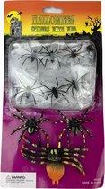 Halloween decoratie Spinnenweb met 9 spinnen