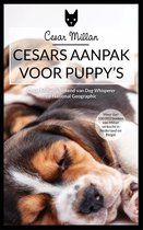 Cesars aanpak voor puppy's