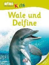 memo Kids. Wale und Delfine