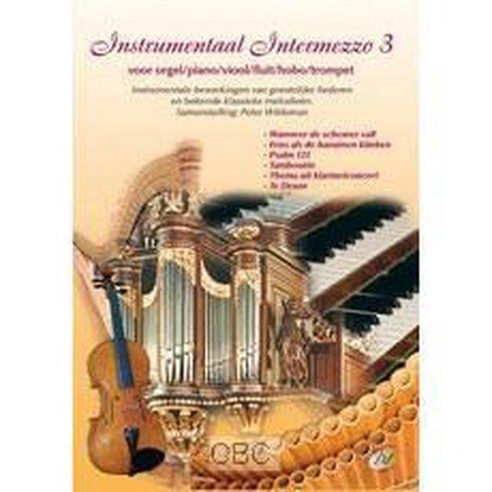 Wildeman, Instrumentaal intermezzo 3