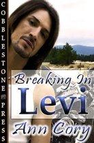 Breaking in Levi