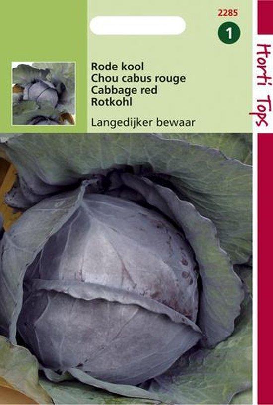 Hortitops Zaden - Rodekool Langedijker Bewaar 2