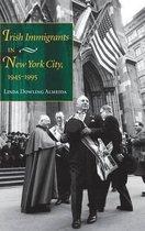 Irish Immigrants in New York City, 1945-1995