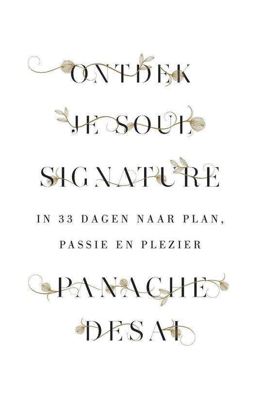 Ontdek je Soul Signature. In 33 dagen naar plan, passie en plezier - Panache Desai |