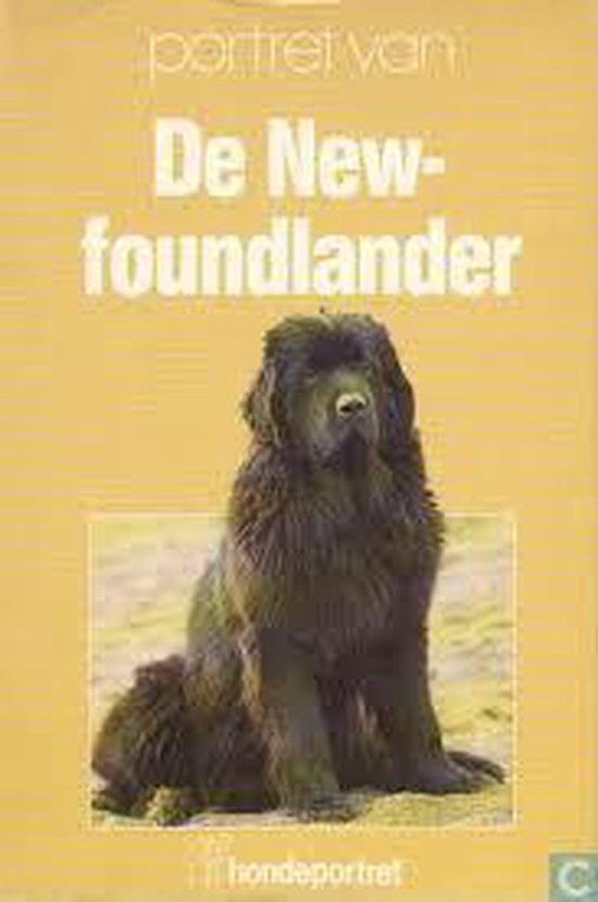 Newfoundlander - Aartselaar |