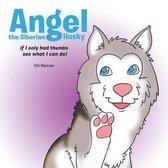 Angel the Siberian Husky
