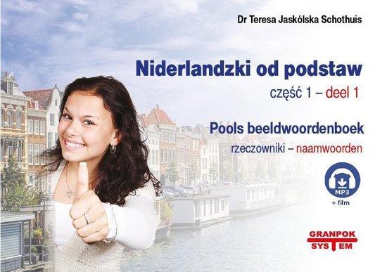 Niderlandzki od podstaw 1 rzeczowniki - Teresa JaskLska Schothuis |