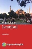 Odyssee Reisgidsen - Wandelen in Istanbul