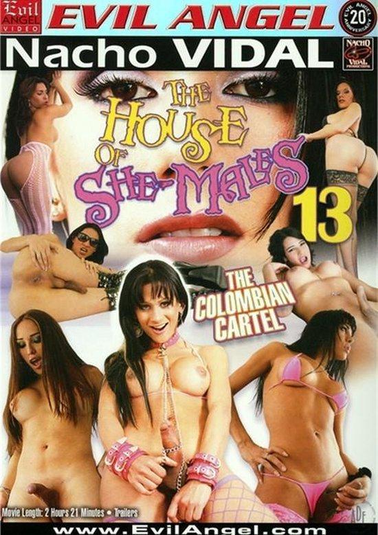 Erotiek - House Of She-Males - Vol. 13