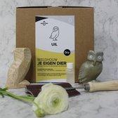 SamStone Doe-het-zelf pakket speksteen uil